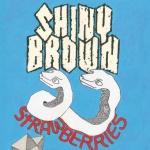 Shiny Brown